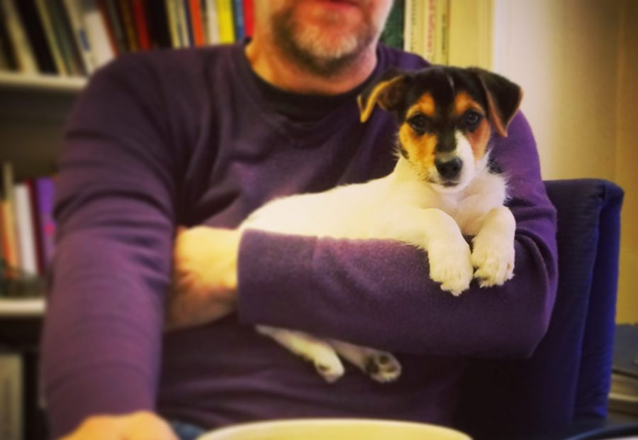 Profile - O2i Design Ltd - Duncan and Hendrix the office Jack Russell